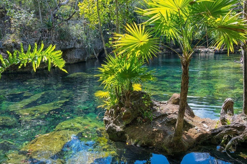 mexico, yucatan, cenote