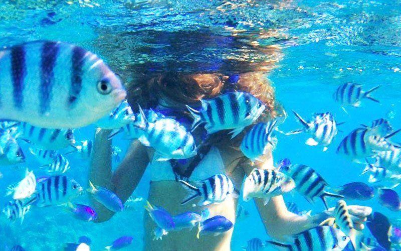 snorkel-cancun-2