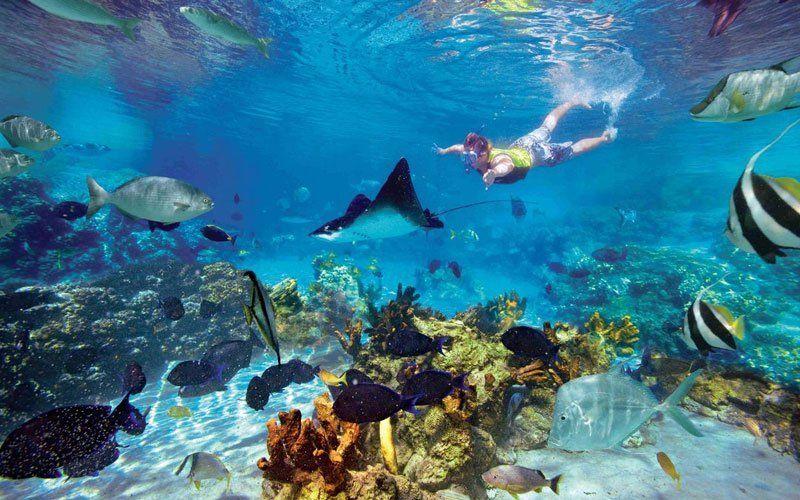 snorkel-cancun-3