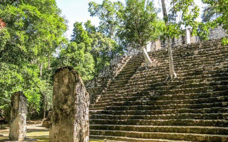 Calakmul9